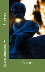 La novela Rictus ha tenido una buena acogida entre el público y la crítica especializada.